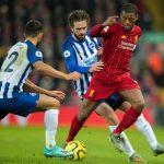 Nhận định Brighton và Liverpool giải bóng đá Ngoại Hạng Anh